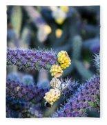 Colorful Cactus Red Purple Green Yellow Plant Fine Art Photography Print  Fleece Blanket