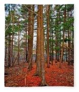 Colorful Carolina Forest Fleece Blanket