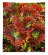 Colorful Coleus Fleece Blanket