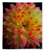 Colorful Dahlia Fleece Blanket