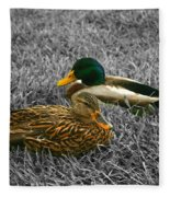 Colorful Ducks Fleece Blanket
