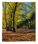 Colorful Fall Autumn Park Fleece Blanket