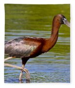 Colorful Glossy Ibis Fleece Blanket