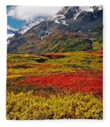 Colorful Land - Alaska Fleece Blanket