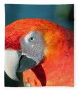 Colorful Parrot Fleece Blanket