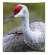 Colorful Sandhill Fleece Blanket
