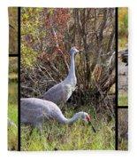 Colorful Sandhill Crane Collage Fleece Blanket