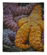 Colorful Starfish Fleece Blanket