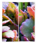 Colorful Succulents In Stereo Fleece Blanket