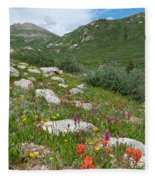 Colors Of The Rainbow - Colorado Mountain Summer Fleece Blanket