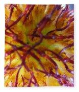 Colour Convolution Fleece Blanket