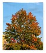 Colours Of Autumn Fleece Blanket