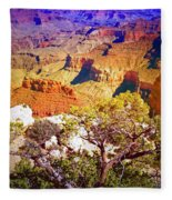 Colours Within The Canyon Fleece Blanket