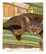 Comfy Kitty Fleece Blanket