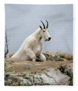 Coming Up Fleece Blanket