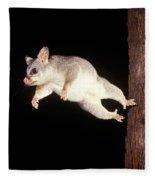 Common Brush-tailed Possum Fleece Blanket