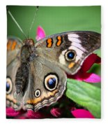 Common Buckeye Junonia Coenia Fleece Blanket
