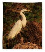 Common Egret Of Palestine Lake Fleece Blanket