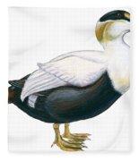 Common Eider Fleece Blanket