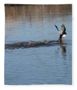 Common Goldeneye Takeoff Fleece Blanket