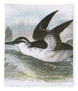 Common Guillemot Fleece Blanket