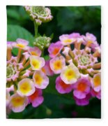 Common Lantana Flower Fleece Blanket