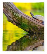 Common Map Turtle Fleece Blanket