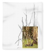 Common Moorhen Fleece Blanket