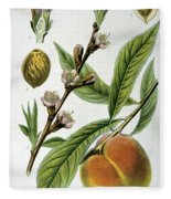 Common Peace Persica Vulgaris Fleece Blanket