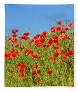 Common Poppy Flowers  Fleece Blanket