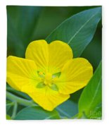 Common Primrose Willow 1 Fleece Blanket