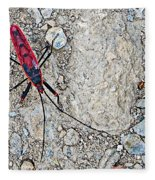 Common Red Bug Along The Seti River Road-nepal  Fleece Blanket
