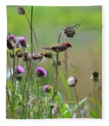 Common Redpoll In A Field Of Thistle Fleece Blanket