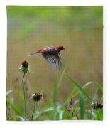 Common Redpoll In Flight Fleece Blanket