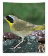 Common Yellowthroat Geothlypis Trichas Fleece Blanket