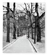 Commons Park Pathway Fleece Blanket