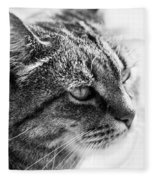Concentrating Cat Fleece Blanket