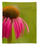 Coneflower - Summer Color Fleece Blanket
