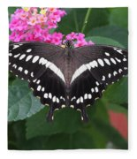 Constantines Swallowtail Fleece Blanket