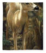 Mule Deer - Contemplation Fleece Blanket