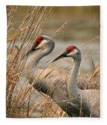 Content Pair Fleece Blanket