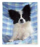 Continetal Toy Spaniel Or Papillon Dog Fleece Blanket