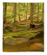 Cook Forest Rocks And Roots Fleece Blanket