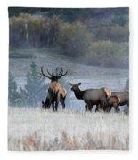 Cool Misty Morning Fleece Blanket
