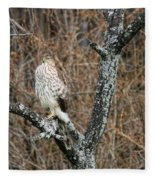 Coopers Hawk 0741 Fleece Blanket