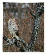 Coopers Hawk 0745 Fleece Blanket