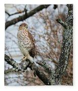 Coopers Hawk 0748 Fleece Blanket