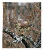 Coopers Hawk 0750 Fleece Blanket