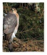 Coopers Hawk In Predator Mode Fleece Blanket