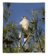 Coopers Hawk In Tree Fleece Blanket